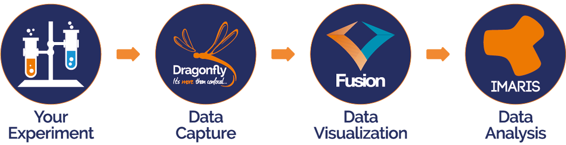 Your Experiemnt -> Data Capture -> Data Visualisation -> Data Analysis